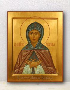 Икона «Аполлинария, преподобная»