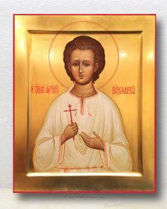 Икона «Артемий Веркольский, мученик» (образец №6)