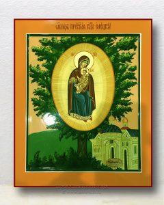 Икона «Елецкая-Черниговская Божия Матерь»