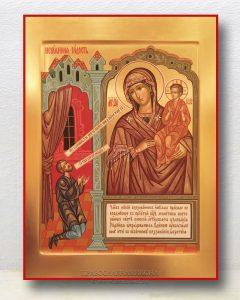 Икона «Нечаянная радость» (образец №3)