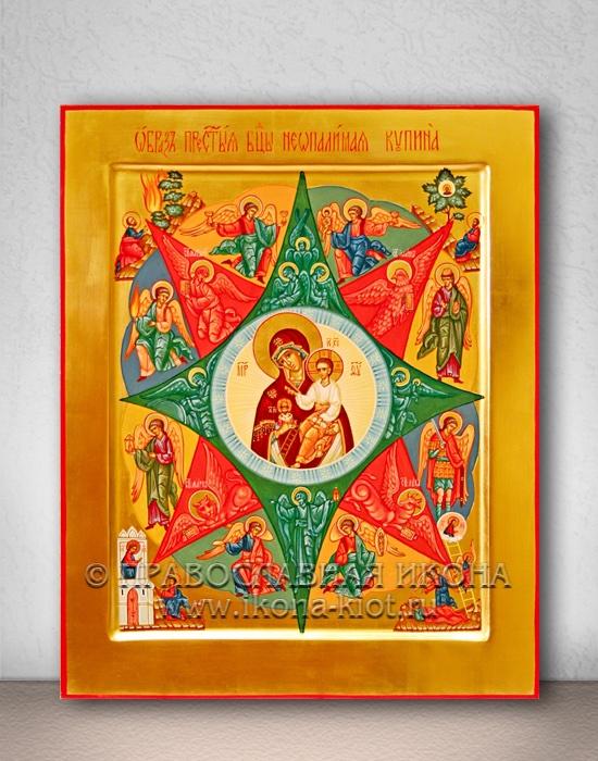 Икона «Неопалимая купина» (образец №6)