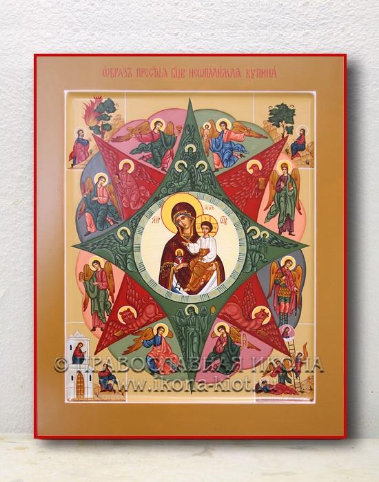 Икона «Неопалимая купина» (образец №8)
