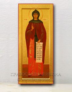 Икона «Емилия Кесарийская, преподобная» (образец №4)