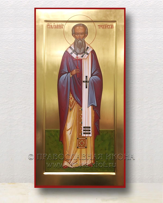 Икона «Емилиан Требийский, епископ, святитель»