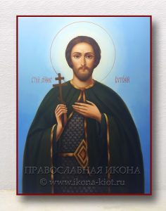 Икона «Евгений Севастийский, мученик» (образец №4)