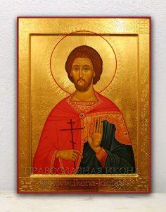 Икона «Евгений Севастийский, мученик» (образец №5)