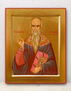 Икона «Харалампий Магнезийский, священномученик» (образец №1)