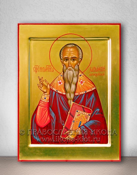 Икона «Харалампий Магнезийский, священномученик» (образец №3)