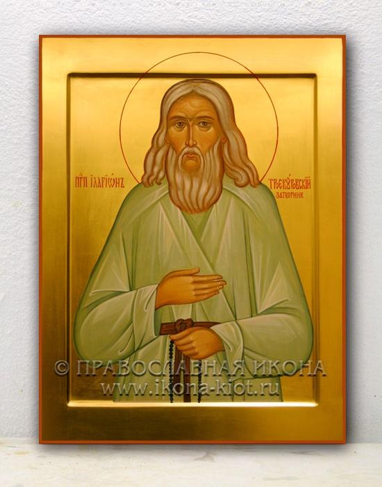 Икона «Иларион Троекуровский, затворник»