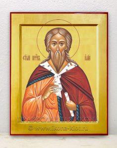Икона «Илья пророк» (образец №3)