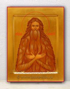 Икона «Макарий Египетский, великий» (образец №4)