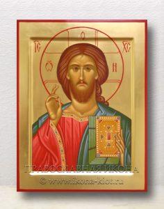 Икона «Спас Вседержитель» (образец №11)