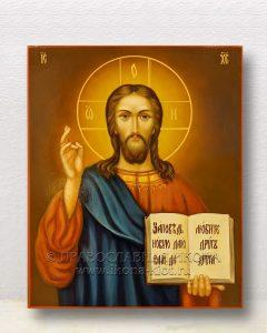 Икона «Спас Вседержитель» (образец №66)