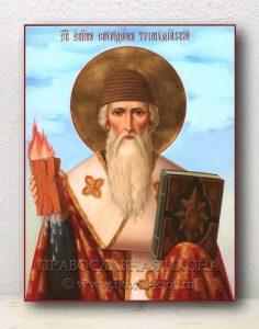 Икона «Спиридон Тримифунтский, святитель» (образец №10)