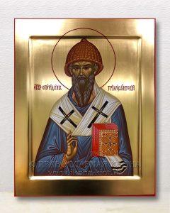 Икона «Спиридон Тримифунтский, святитель» (образец №15)