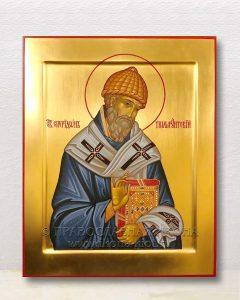 Икона «Спиридон Тримифунтский, святитель» (образец №18)