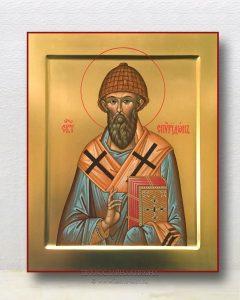 Икона «Спиридон Тримифунтский, святитель» (образец №9)
