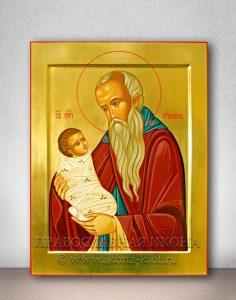 Икона «Стилиан Пафлагонянин, преподобный» (образец №3)
