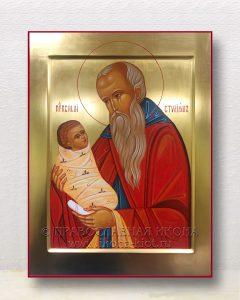 Икона «Стилиан Пафлагонянин, преподобный» (образец №7)