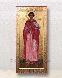 Икона «Трифон, святой мученик» (образец №10)