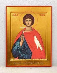 Икона «Трифон, святой мученик» (образец №6)