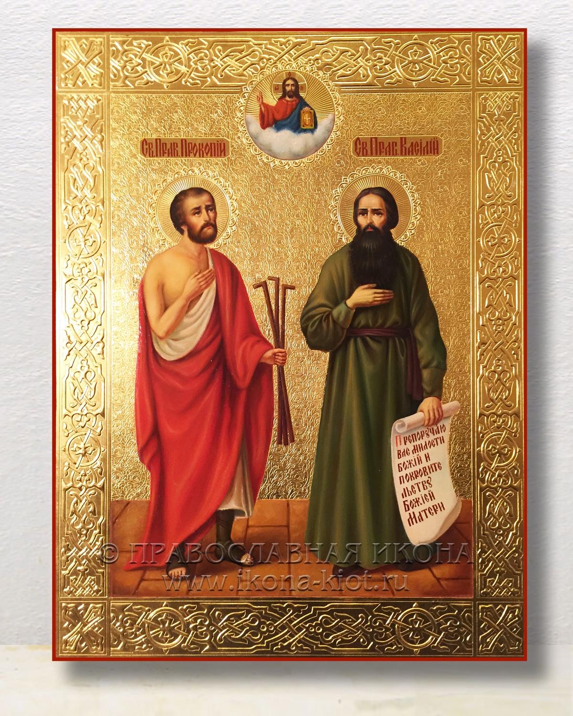 Икона «Василий и Прокопий»